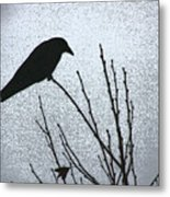 Crow And The Moon Metal Print