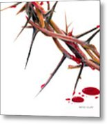 Crown Of Thorns Metal Print by Dennis Schmelzer