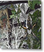 Cryptic Messages Metal Print