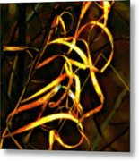 Curly One Metal Print
