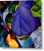 Curved Leaf Metal Print