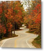 Curvy Fall Metal Print by Adam Romanowicz
