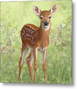 Cute Whitetail Deer Fawn Metal Print by Crista Forest