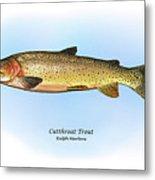 Cutthroat Trout Metal Print