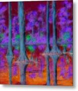 Cypress Reflection Metal Print