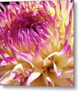 Dahlia Flower Art Sunlit Floral Prints Baslee Troutman Metal Print