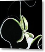 Dance Of The Ghost Orchid Metal Print