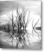 Dead Trees Bw Metal Print