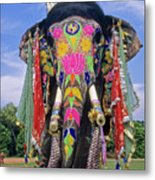 Decorated Indian Elephant Metal Print
