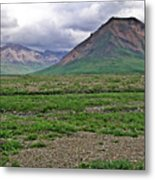 Denali National Park Landscape 3 Metal Print