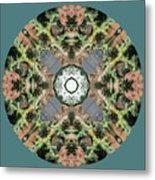 Desert Mandala Metal Print