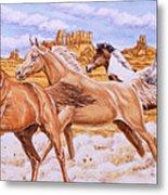 Desert Run Metal Print by Richard De Wolfe
