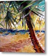 Desert Seashore Metal Print
