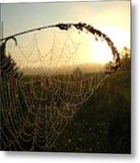 Dew On Spider Web At Sunrise Metal Print