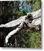Dinosaur Head Branch Metal Print