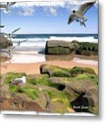 Do-00046 Birdie Beach Metal Print