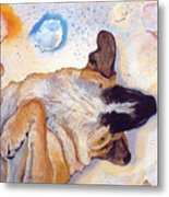 Dog Dreams Metal Print