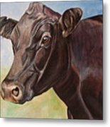 Dolly The Angus Cow Metal Print