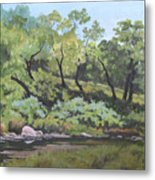 Dreaming By The Creek Metal Print