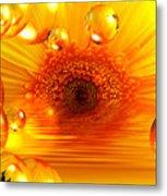 Dreams 2 - Gerbera Sunrise Metal Print