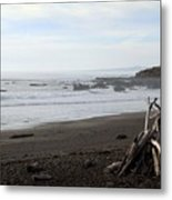 Driftwood And Moonstone Beach Metal Print