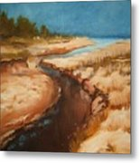 Dry River Bed Metal Print