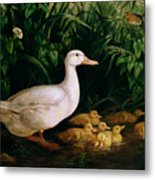 Duck And Ducklings Metal Print by English School