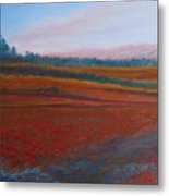 Dusk Falls On The Pumice Field Metal Print