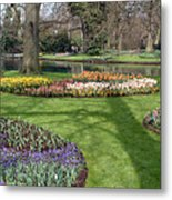 Dutch Tulip Gardens Metal Print