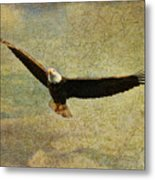 Eagle Medicine Metal Print
