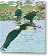 Eagle Over The River Metal Print