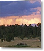 Eagle Rock Estes Park Metal Print