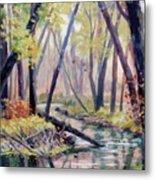 Early Fall On East Canyon Creek Metal Print