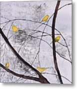 Early Spring 1 Metal Print by Carolyn Doe