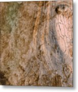 Earth Maiden Metal Print