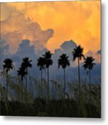 Eight Palms Metal Print