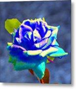 Electric Rose Metal Print