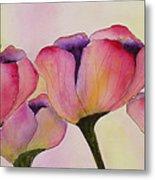 Elegant Tulips  Metal Print