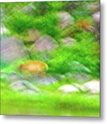 Elk In The Rocks Metal Print
