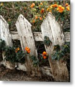 Elsinore Fence Metal Print