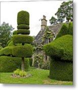 English Yew Topiary Metal Print