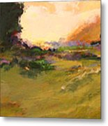 Evening Meadow Metal Print