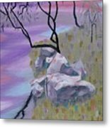 Evening Reflecltion Metal Print