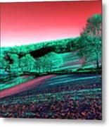 Exmoor In The Pink Metal Print