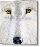 Eyes Of The Wolf Metal Print