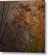 Fall At Amicalola Falls Metal Print
