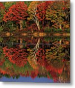 Fall Color Reflected In Thornton Lake Michigan Metal Print