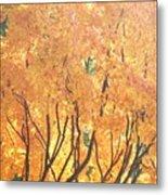 Fall Colors At Cape May Metal Print