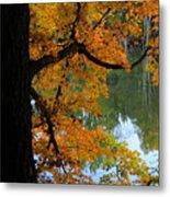 Fall Day At The Lake Metal Print