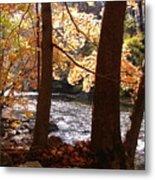 Fall Flows Metal Print